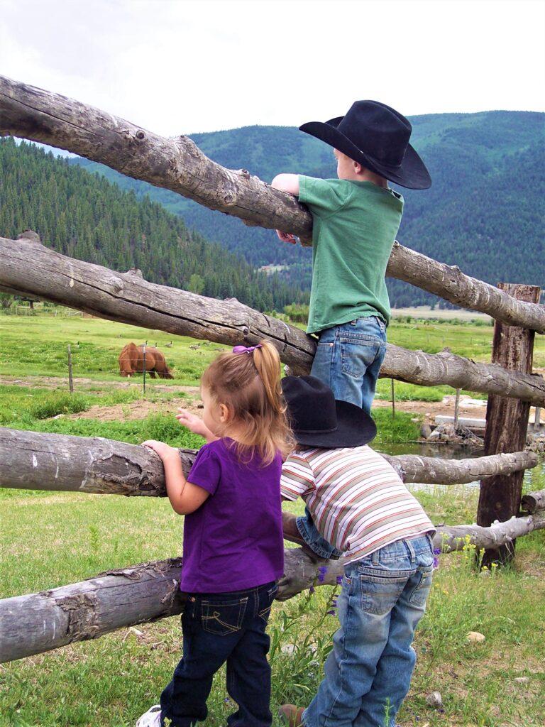 3 kids on fence