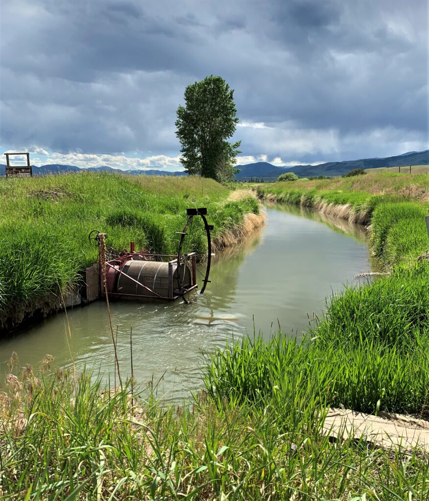Doughty irrigation ditch