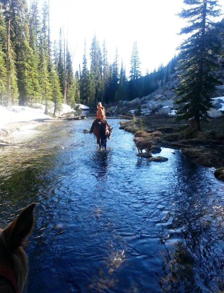 Jamie on horse